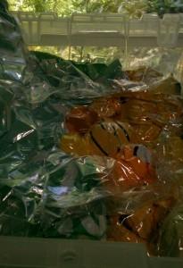 Yellow fiber stash in vacuum storage bag