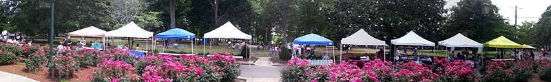 Vendor booths at Art in the Park, Herman Park, Goldsboro (June event).